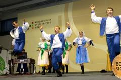 Vystupenie-FS-Kolovrat-na-Medzinarodnej-vystave-Bonsai-2012